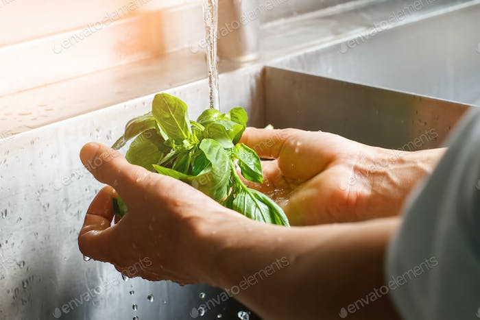 Male hands wash spinach