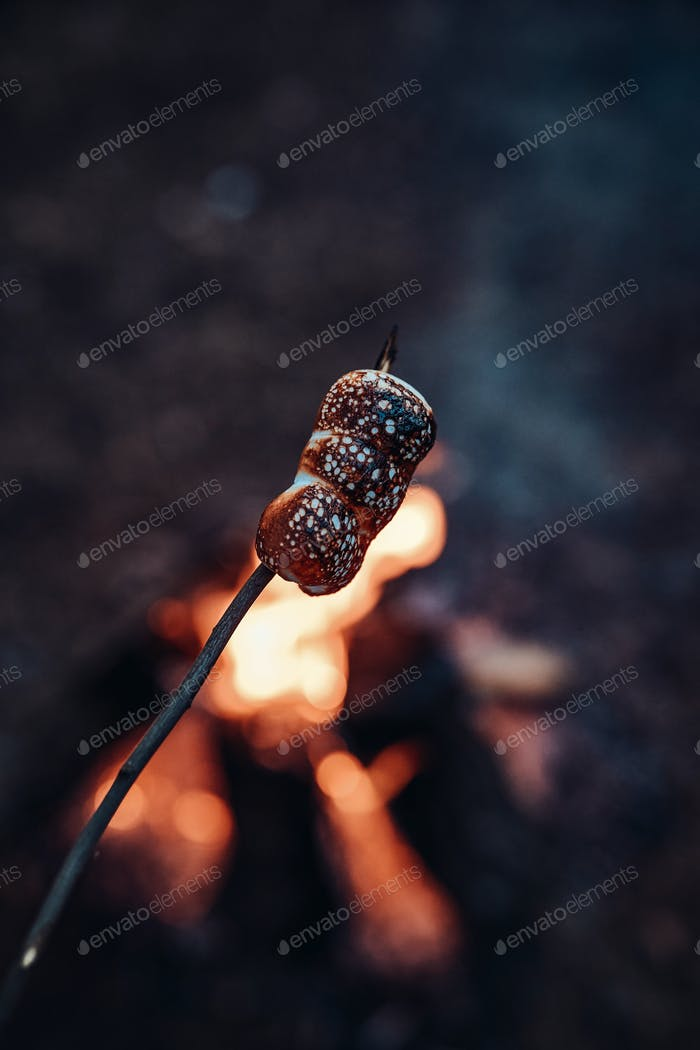 Roasting of marshmallow on stick at the stake in woods