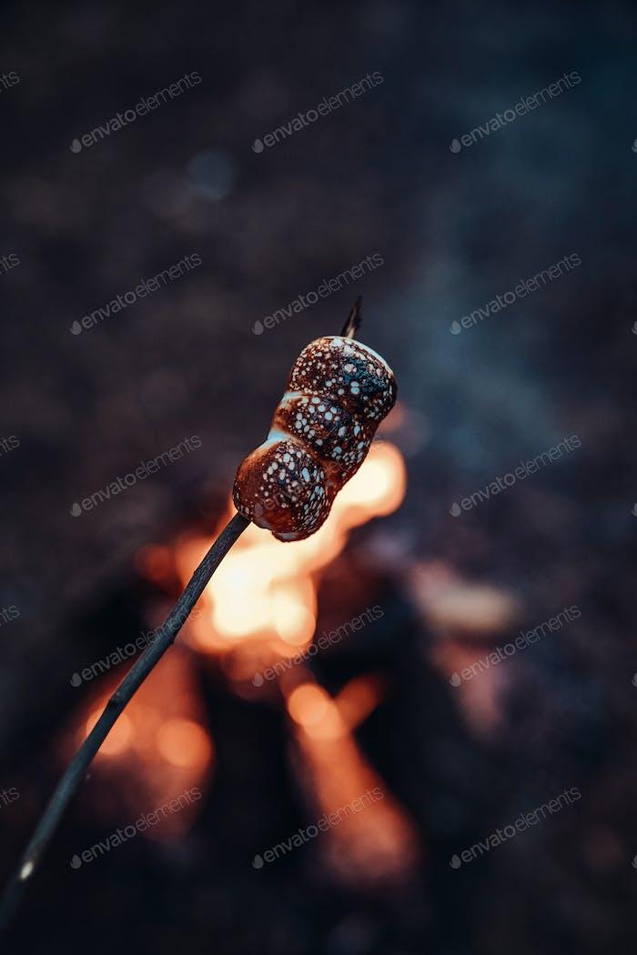 Braten von Marshmallow auf Stick auf dem Scheiterhaufen im Wald