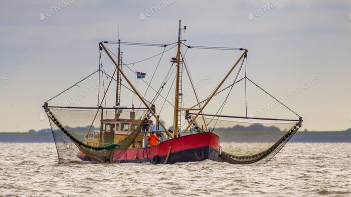 Dutch Shrimp fishing cutter vessel