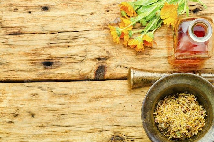 Calendula healing herbs