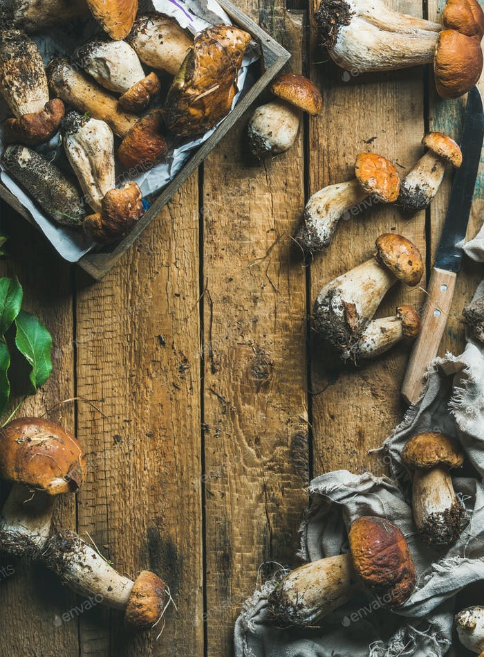 Freshly picked white forest mushrooms, leaves, knife on wooden background