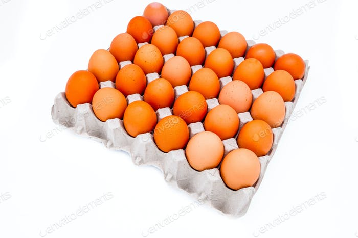 Egg in a carton