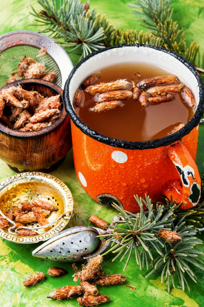Tea with pine buds