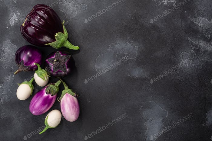 Aubergines or eggplants of different shapes and colors on dark grey background, top view, copy space
