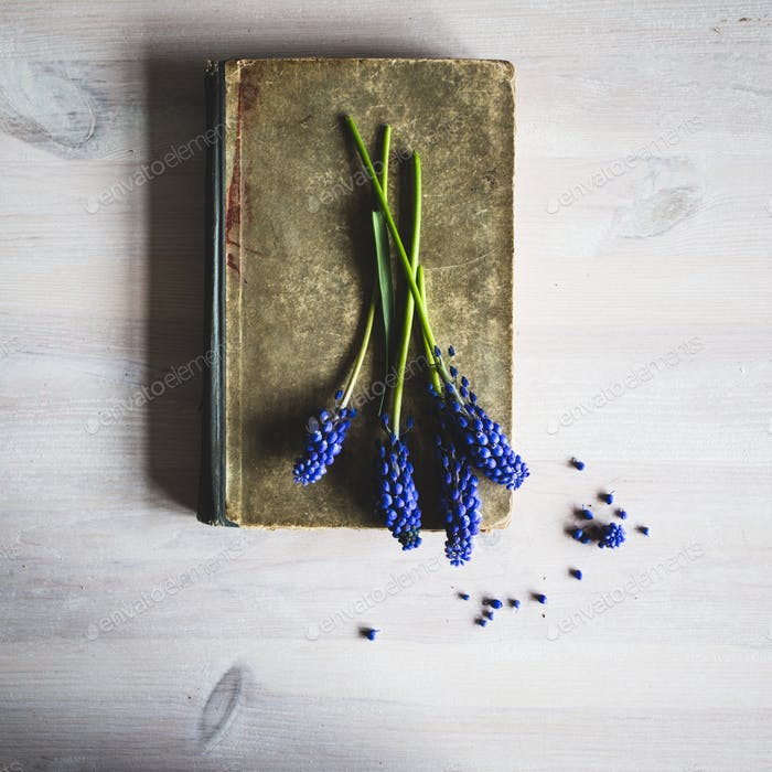 Old book with flowers. Vintage