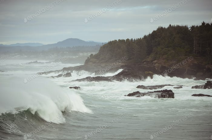 Rugged Oregon Coast Waves