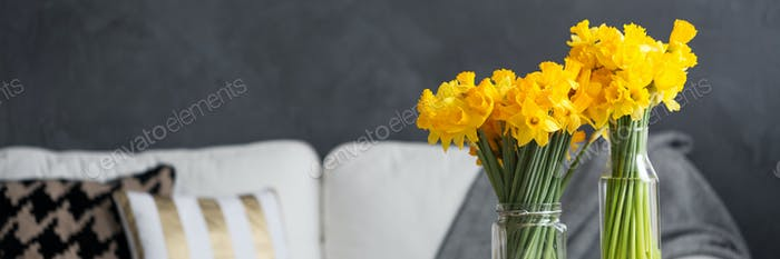 Fresh daffodils in stylish apartment
