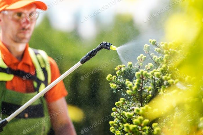 Saisonale Pflanzen Insektizid