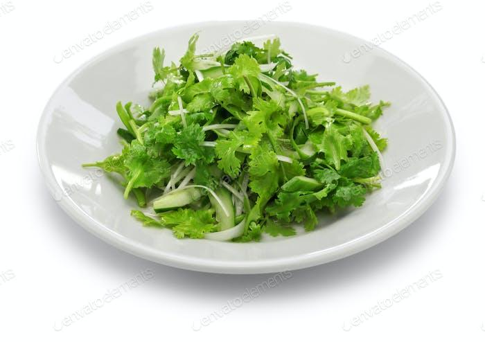 ensalada de cilantro, ensalada de cilantro