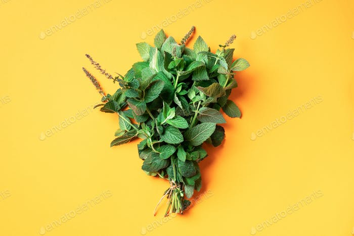 Fresh peppermint leaves on trendy yellow background. Top view. Copy space. Bunch of mint herbs