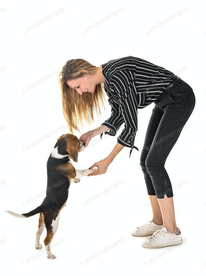 Welpe Beagle und Frau