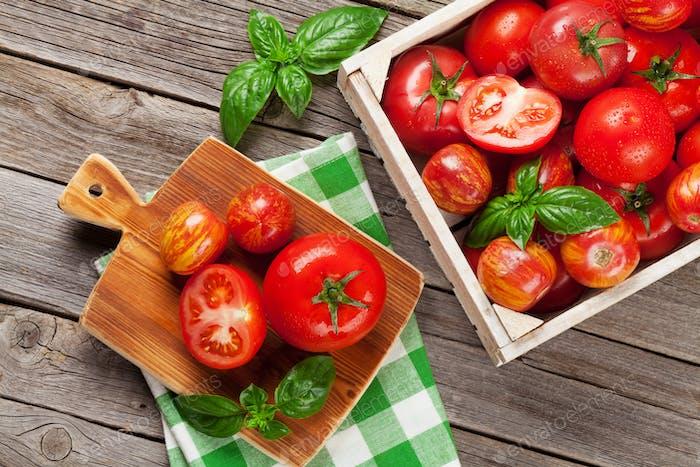 Fresh ripe garden tomatoes and basil