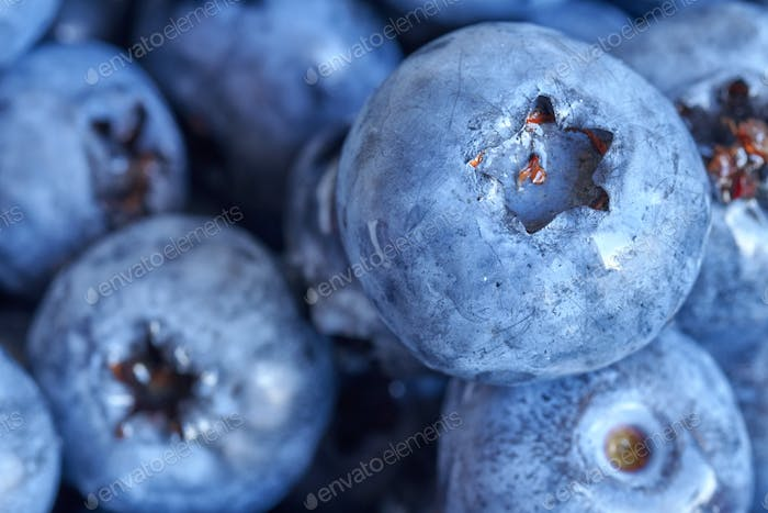 Extreme close up picture of ripe and fresh blueberries.
