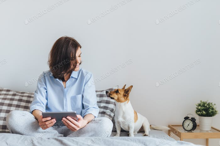 Beautiful female in pyjamas sits on bed in bedroom with her  dog, holds tablet, enjoys weekend