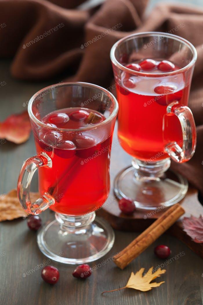 heißer Cranberry-Tee mit Zimt wärmenden Getränk