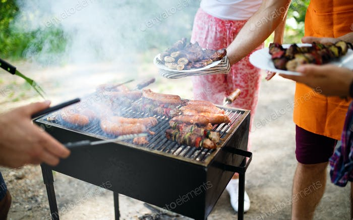 Assorted meat from chicken, pork and various vegetables on barbecue grill
