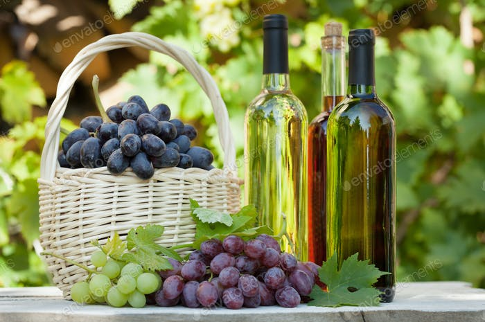 Various grapes and white wine