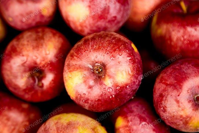 Fresh organic red apples on black background.