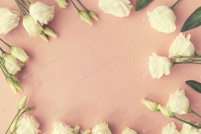 Von oben weißen Rosen Rahmen