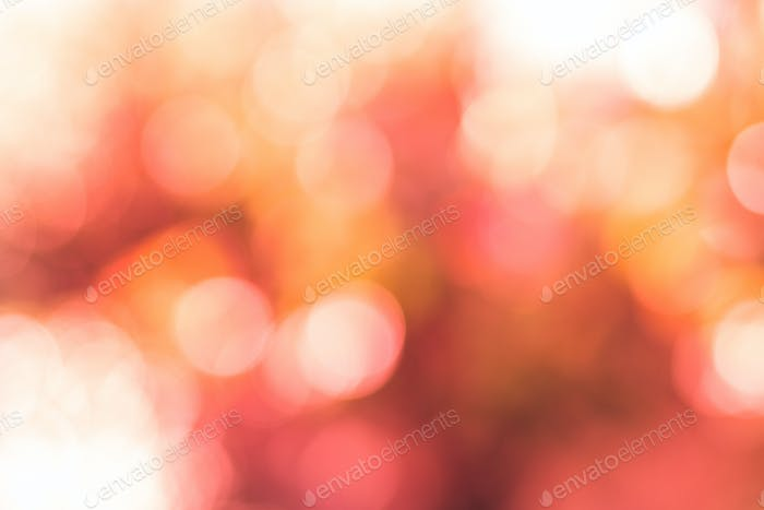 Abstract blur natural background, coral and orange