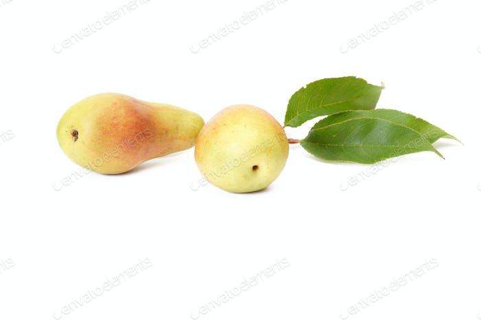 Splendid,ripe,tasty pears on a white.