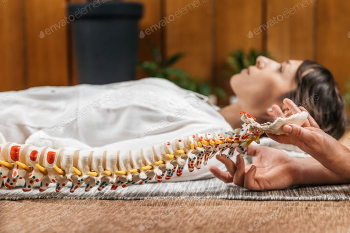 Chiropractic and Osteopathy Patient Education with Flexible Spine Model