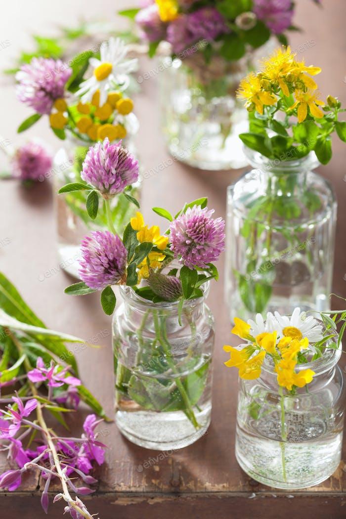 bunte medizinische Blumen und Kräuter in Gläsern