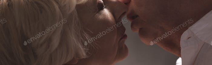 Senior marriage tenderly kissing