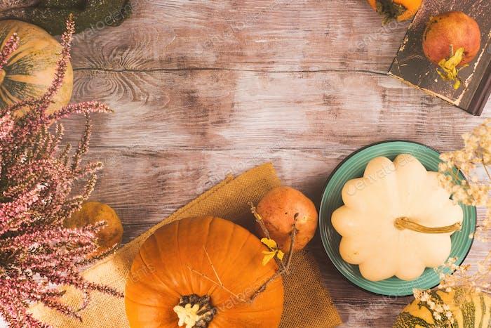 Herbst Thanksgiving stimmungsvollen Hintergrund mit Squash