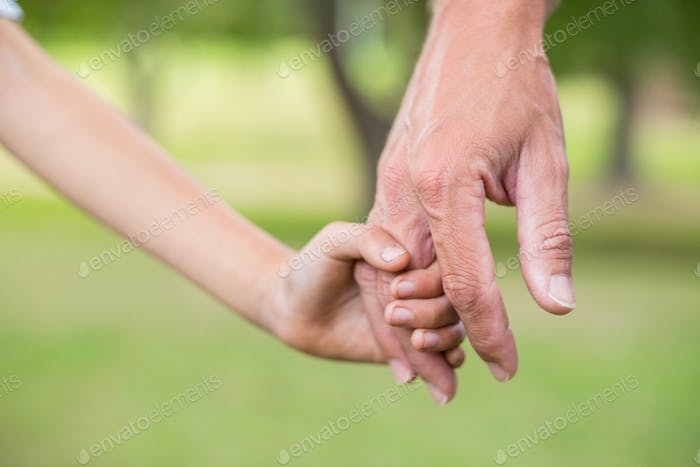 Father and son holding hands in the park on a sunny day