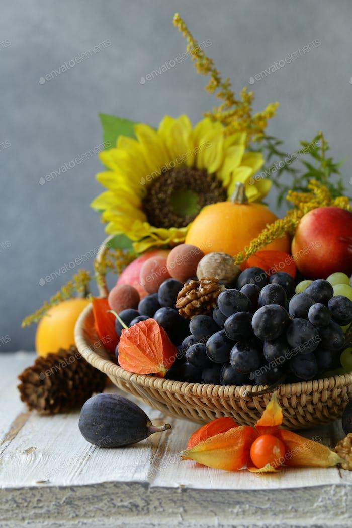 Still-life Fruit Organic Harvest