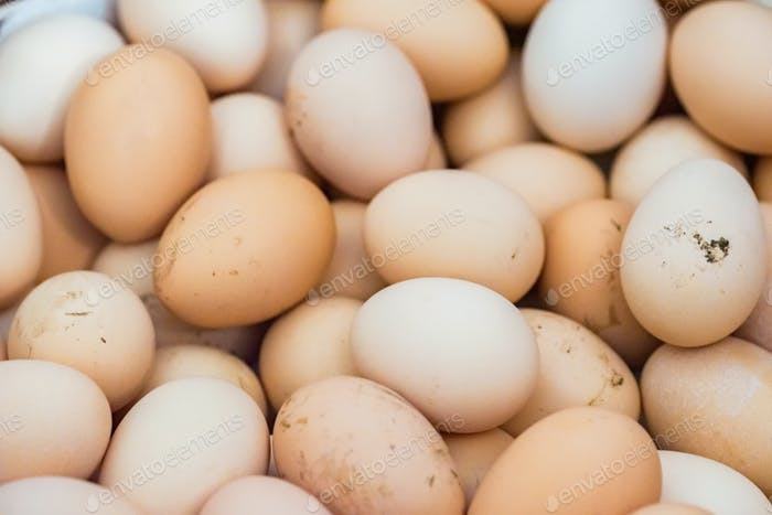 Lots of raw chicken eggs background close up