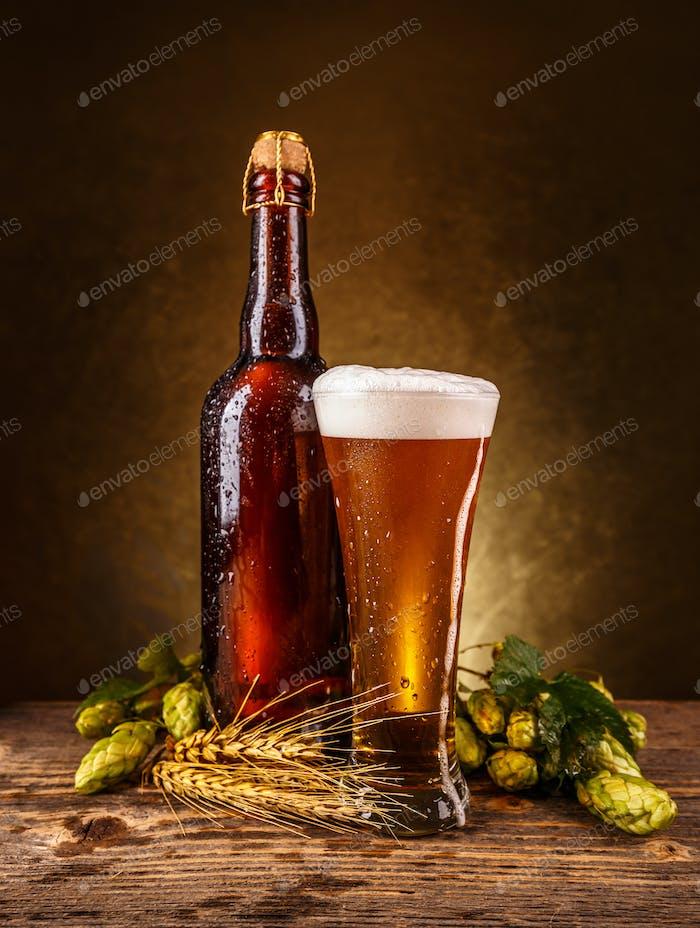 Frisches schaumiges Bier