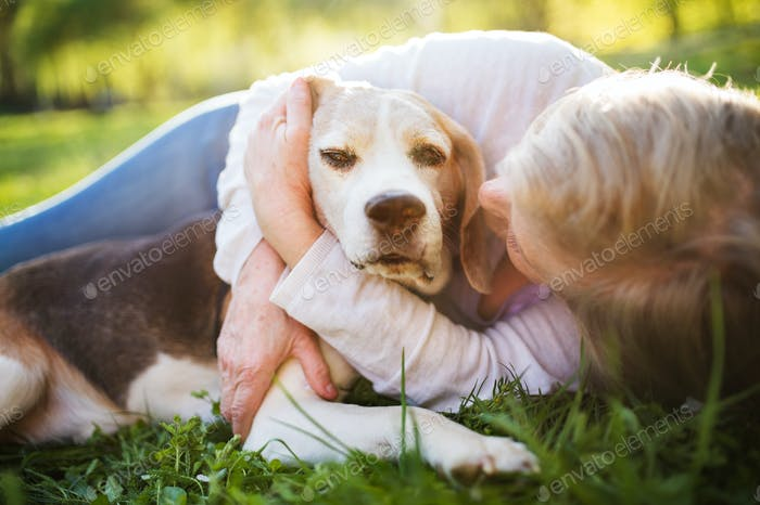 Unrecognizable senior woman with dog in spring nature.