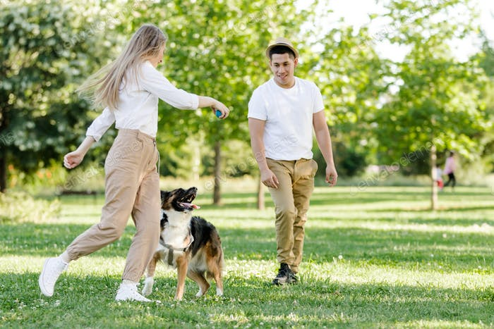 Couple playing with their dog in the park. Latino man and Caucasian woman with a Border collie