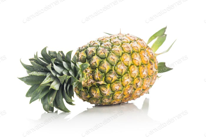 Fresh whole juicy and nutritious pineapple fruit against white b