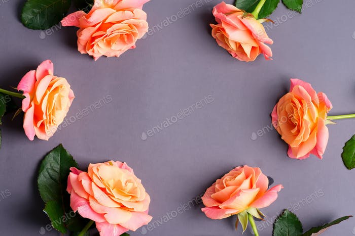 Frame card from natural bouquet of freshly picked roses flowers on a pastel pink background