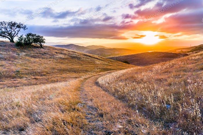Walking path on the grassy hills of south San Francisco bay area at sunset, San Jose, California