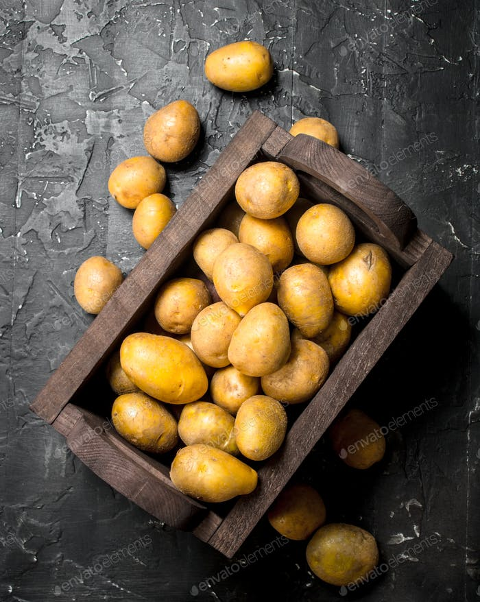 Yellow potatoes in the box.