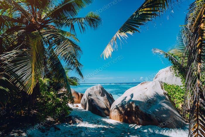 Famous tropical beach Anse Source d'Argent natural palm shade, granite boulders, La Digue Island