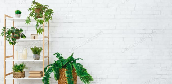 Bookshelf With Various Plants Over White Wall Photo By Prostock Studio On Envato Elements