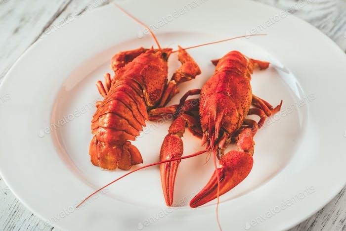 Gericht von gekochten Krebsen mit Soße