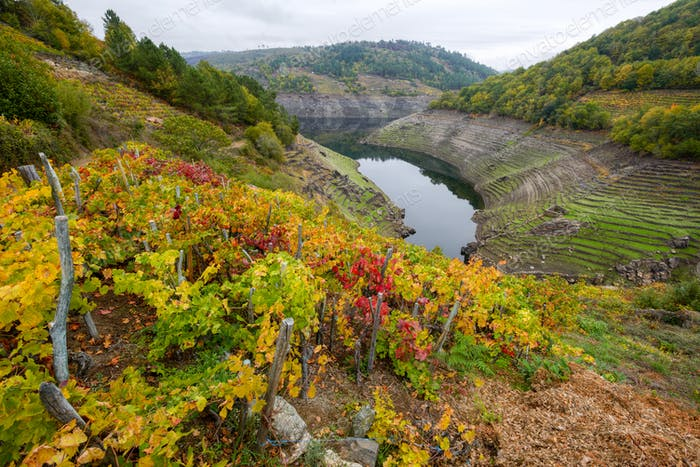 Ribeira Sacra and its hillsides covered with vineyards
