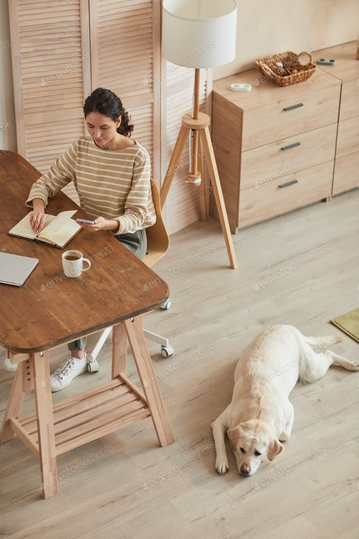 Woman Working at Cozy Home Office with Dog High Angle