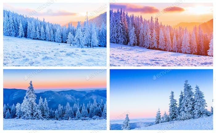 Winteralpen Collage