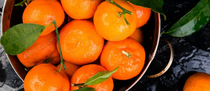 Banner of Tangerines background. Delicious and beautiful Citrus.