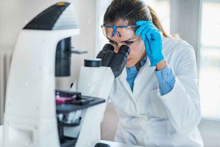 Scientist researching in laboratory
