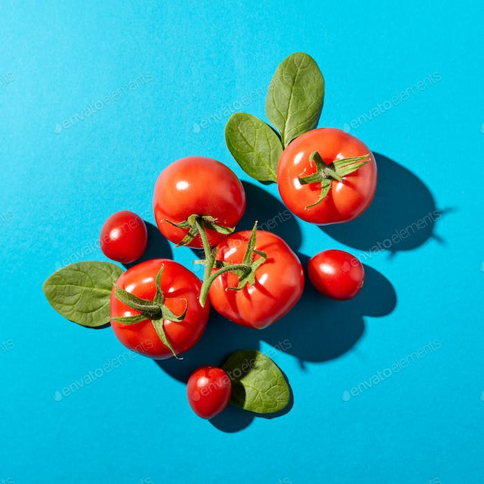 Tomatoes with green stems and spinach leaves presented on a blue background with reflection of the