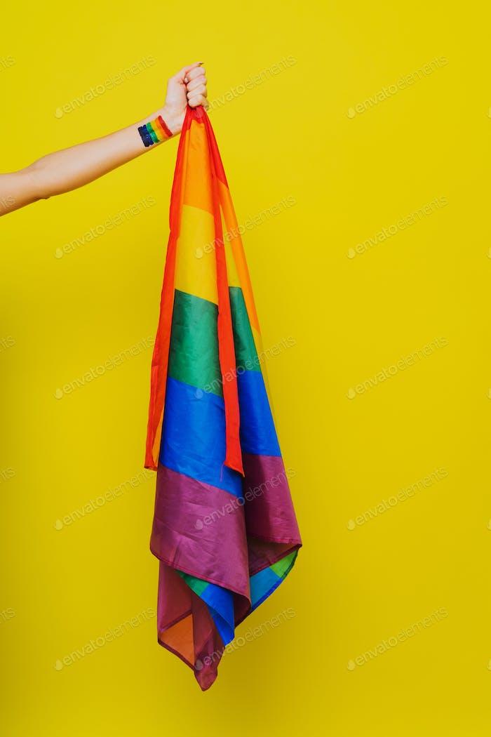 LGBTQ flag for human rights, lgbt concept